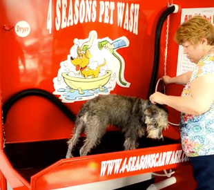 Pet wash four seasons car wash 4 seasons pet wash our pet wash works similar to a self solutioingenieria Gallery